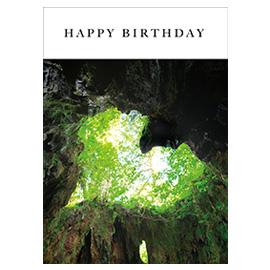 メッセージブック Happy Birthday (日本の絶景)