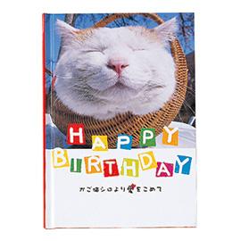 メッセージブック かご猫シロより愛をこめて HAPPY BIRTHDAY(かご猫)