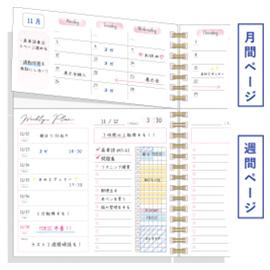 スタディプランシリーズ<br>ツインスタディ6ヶ月(ピンク