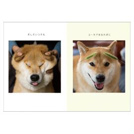 MRUCUメッセージブック(柴犬まる)