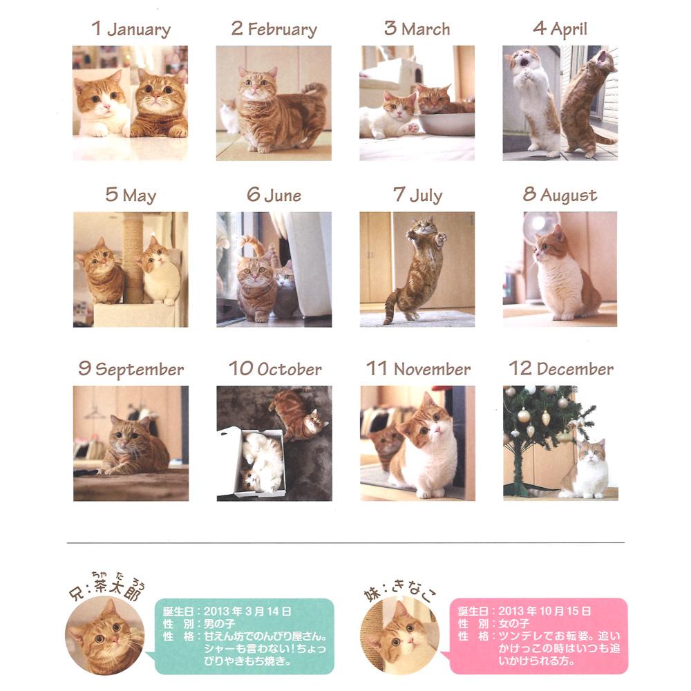 茶太郎ときなこカレンダー