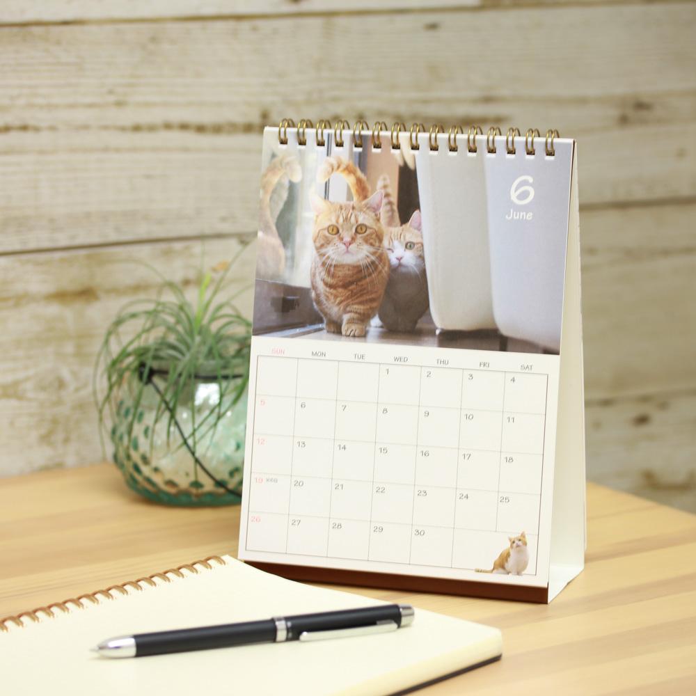茶太郎ときなこ卓上カレンダー