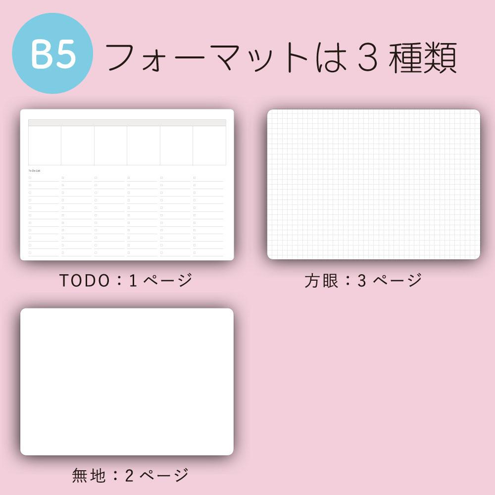 Write White+ <br> ホワイトボードノートB5(BE)